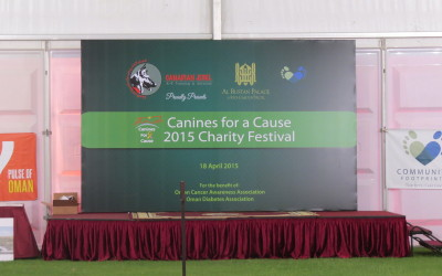 Canines for a Cause 2015 Charity Festival