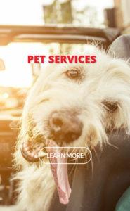 pet-services