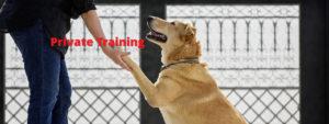 private-training
