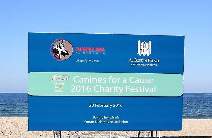 The 2nd annual Canines for a Cause Charity Festival