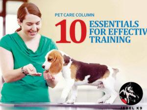10-essentials-for-effective-training