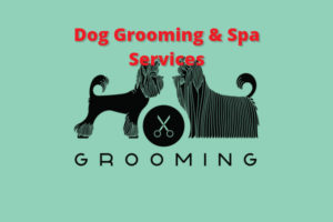 Dog-Grooming-Spa-Services