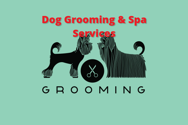 Dog Grooming & Spa Services