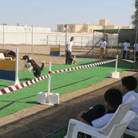 Alruwad-International-School (3)